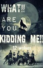 What!! Are You Kidding Me!! (EXO fanfic) [HAITUS!!] by jamjampanda