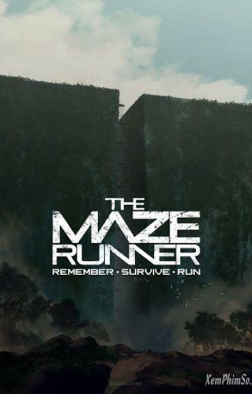 The Maze Runner ( Giải mã mê cung ) full