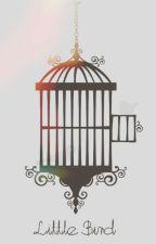 Little Bird | h.s tłumaczenie by sausag