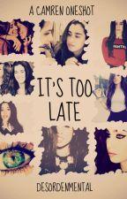 It's too late. (Camren OneShot) by DesordenMental