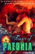 The Flower Of Paeonia by ValerieHawkeye