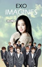 EXO IMAGINES by jngkook