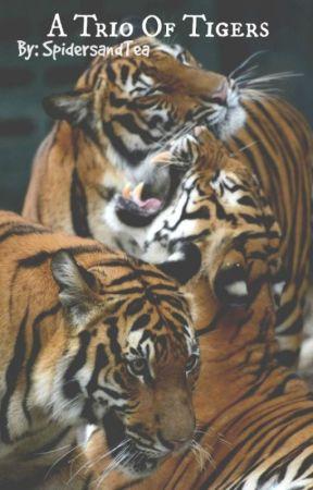 A Trio Of Tigers: Blood-arc Series, #1 - (BoyxBoyxBoyxBoy) by SpidersAndTea