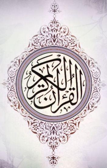 Quran Translated