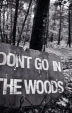 Don't go in the woods by Xplayer24