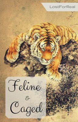 Feline & Caged