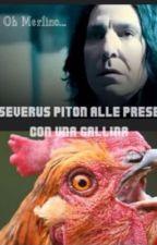 Severus Piton Alle Prese Con Una Gallina by aledixon