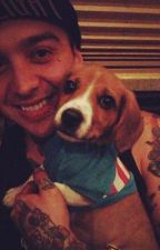 Bulletproof Love (Tony Perry Fan Fic) by benbrucesbestfriend