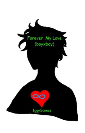Forever My Love boyxboy (Sequel to Forever My Hero) by IggyScones
