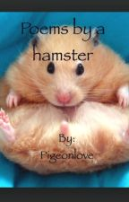 Hamster poems by Pigeonlove