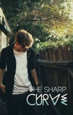 The Sharp Curve (boyxboy) by DoubleYoo
