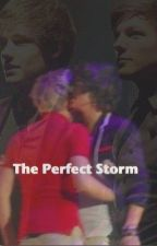 The Perfect Storm (Narry & Lilo One Direction fan fiction)**COMPLETED** by DirectionersRUs