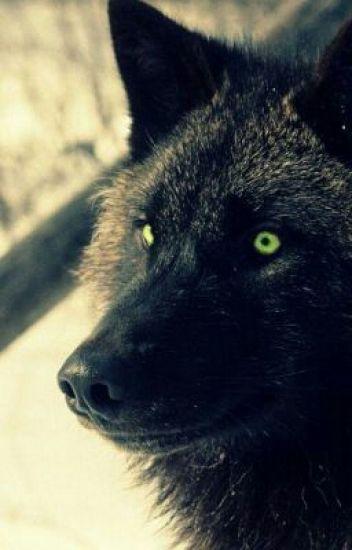 Black Shuck, il lupo nero