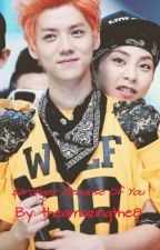 Stronger Because Of You (XiuHan) by shinee_xiuhan