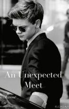 An Unexpected Meet by erinrose_