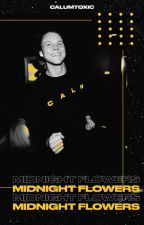 midnight flowers | ashton irwin by calumtoxic