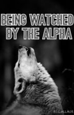 Being Watched by the Alpha by maddierose174
