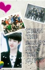 When The Arrow Hits The Cupid (EDITING) by Rose_xingxing