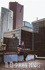 El es Shawn Mendes by ontherunandgo