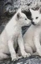 """The Lonely Pups """"an  Alpha's Son Soulmate story"""" by abracamonte"""