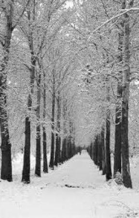 Winter by JudeHawkins