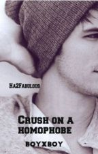 Crush on a homophobe (boyxboy) by Ha2Fabulous
