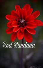 Red Bandana   Ashton Irwin by fletcherssmile98