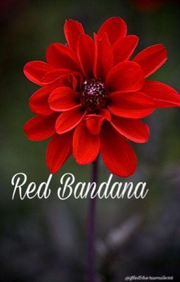 Red Bandana   Ashton Irwin