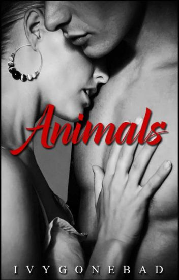 Animals: One Shot