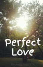 Perfect Love (Harry Styles Fanfic) by BrokenWings13x