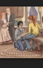 Harry Potter and Ginny Weasley by siobhra_conway
