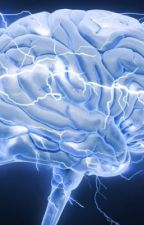 12 things we know about the brain. by scientificmind