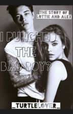 I Punched The Bad Boy? // ON HOLD by niamh_eh