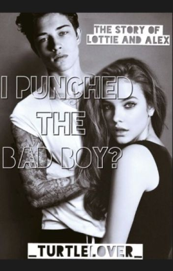 I Punched The Bad Boy?