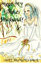 Meet My (Fake) Husband! - GaLe FanFic by OnLy_HuMaN_ChIcA