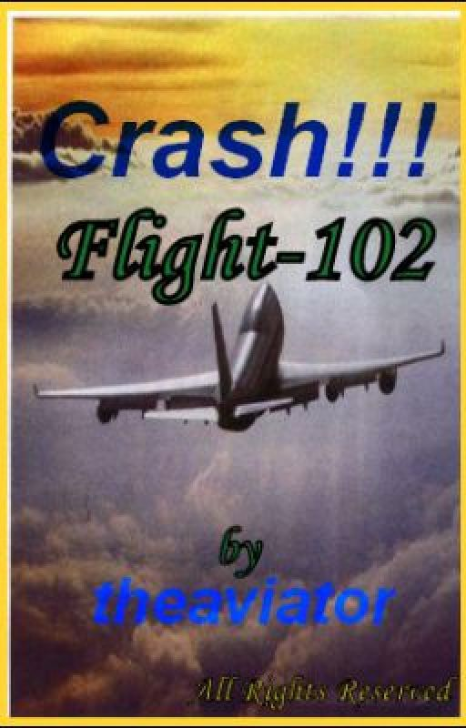 Crash!!! Flight-102 by theaviator