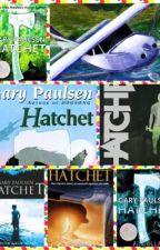 The hatchet by footymoo
