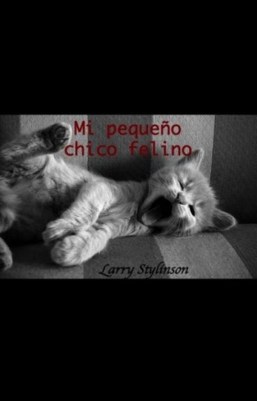 Mi pequeño chico felino - Larry Stylinson ( Terminada )