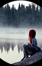 Counting the Days by ItsMeTay