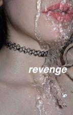 revenge ☠ h.s by disconnvct