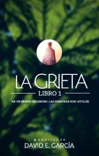La Grieta by DavidEGar