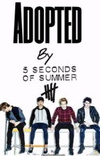Adopted By 5SOS by NathalieNx