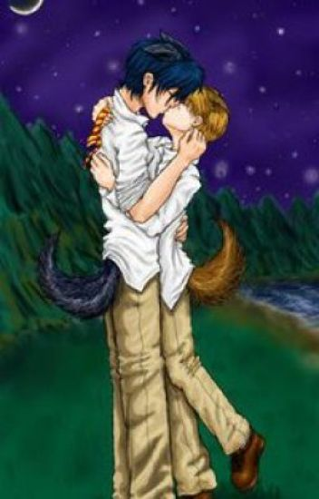 Moonlight kisses - A Harry Potter/Wolfstar Fanfic - Katie H