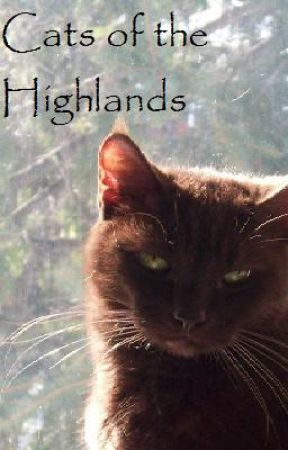 Cats of the Highland by BijouCat