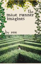 The Maze Runner Imagines by inconvenient