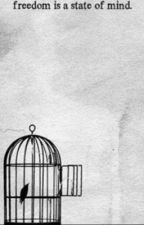 Bird in a cage [Levi x Reader] by Crazy_Scientist