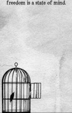 Bird in a cage [Levi x Reader] by Crazy_Scientist