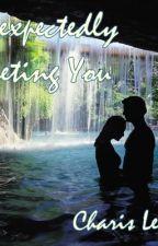 Unexpectedly Meeting you by ayatcharis