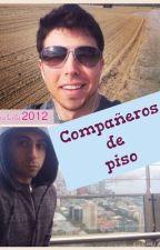 Compañeros de piso ( Willyrex, Vegetta y tú) [TERMINADA] by criaturita2012