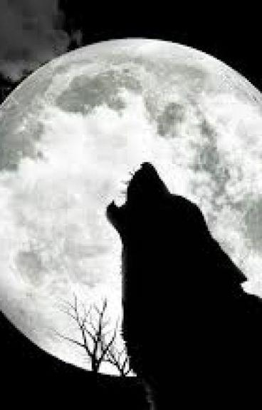 In the Dark on the Night (BWWM)